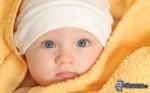 bebe-160857.jpg